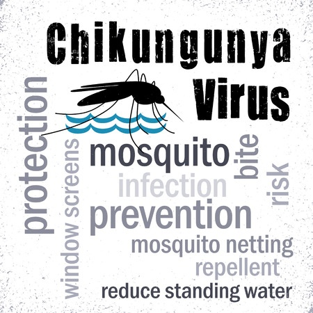 Which Is The Difference Between Zika And Chikungunya?